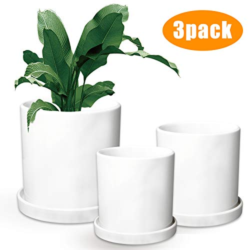 Flower Pots,Small to Large Sized Round Planter Pots,Ceramic Plants Containers,Succulent Pots with Drainage Hole,White Garden Pots 3 Pack ()