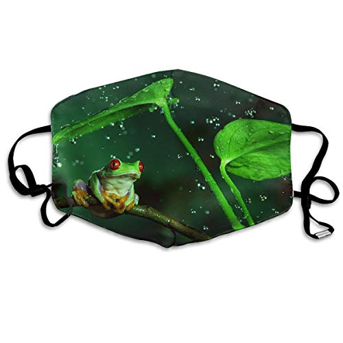 - Mr.Roadman Unisex Mouth Mask Cute Frog and Rain Polyester Anti-dust Masks Washed Reusable Face Mask for Outdoor Cycling