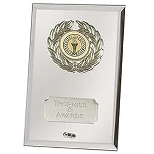 """7""""escudo espejo plata cristal placa trofeo premio con grabado hasta 30letras jc081cq"""