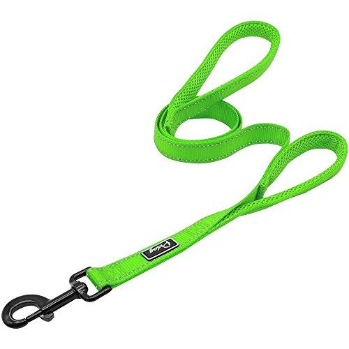 (Didog 4 Feet No Pull Nylon Webbing Reflective Dog Leash,Training Dog leash in Traffic,Green)