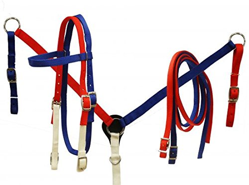 - Showman Horse Red White and Blue Nylon Bridle, Breast Collar, and Split Reins Set