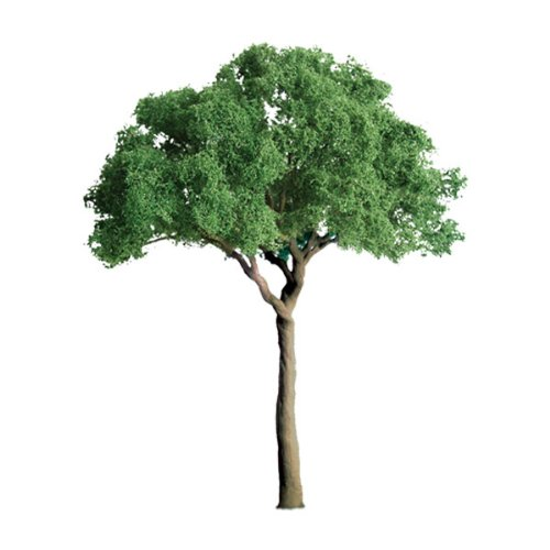 JTT Scenery Products Professional Series: Green Jacaranda, 1.5