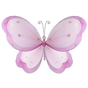 Amazon.com : The erfly Grove Chloe erfly Decoration 3D ... on