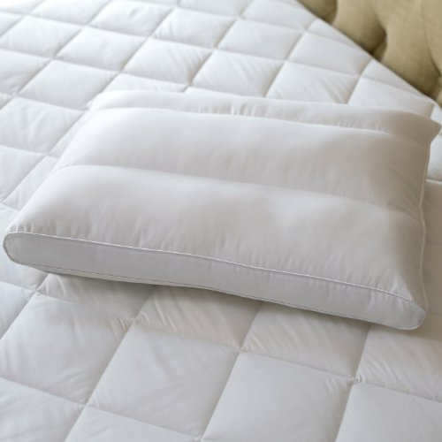 Sealy Posturepedic Posture Fit Side Sleeper Pillow Size: Standard
