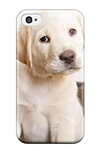 Paul Jason Evans's Shop 5036156K83616209 Cute Puppy Eyes Fashion Tpu 4/4s Case Cover For Iphone