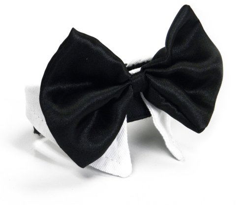 Platinum Pets Formal Dog Bow Tie and Collar, 11-12-Inch, White