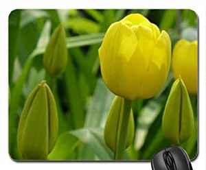 Tulips Mouse Pad, Mousepad (Flowers Mouse Pad)