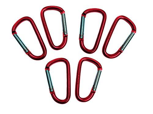[해외]골드 라이온 기어 3 알루미늄 Carabiner D 모양 버클 팩, 키 체인 클립, 스프링 스냅 열쇠 고리 클립 후크 버클/Gold Lion Gear 3  Aluminum Carabiner D Shape Buckle Pack, Keychain Clip, Spring Snap Key Chain Clip Hook Buckle