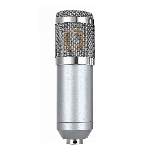Andoer Condenser Microphone High Sensitivity Recording Studio Professional Recording Equipment Silver by Andoer-1