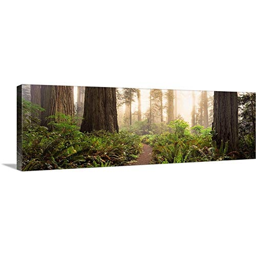 Canvas on Demand Premium Thick-Wrap Canvas Wall Art Print en