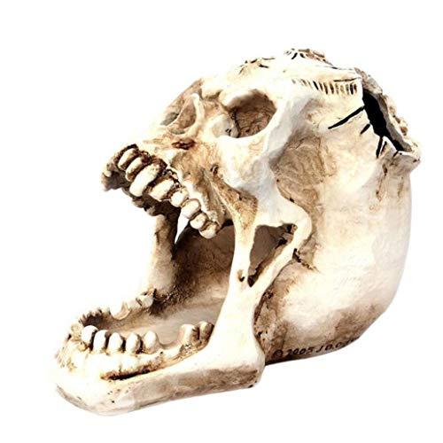 Resin Craft Skull Pencil Holder Pen Cup Pins Paper Clips Organizer Skull Figurine for Halloween Decorations