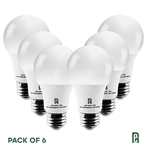 RAY Electrico LED Light Bulbs -A19, 800-Lumens, 2700-Kelvin, 9W (60W Equivalent) E26 Medium Base, Non-Dimmable, Long Lasting Warm White Light (6 Pack, 2-Year Warranty) For Sale
