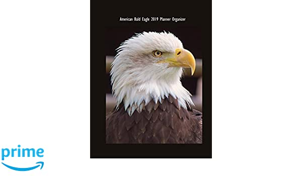 American Bald Eagle 2019 Planner Organizer: Monthly Weekly ...