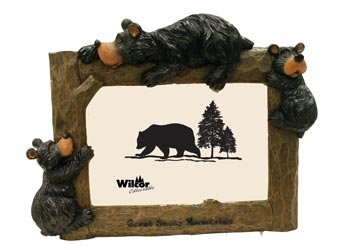 Great Smoky Mountains, Bear Photo Picture Frame, 4x6, Horizontal, 9-inch (Lodge Picture Frame)