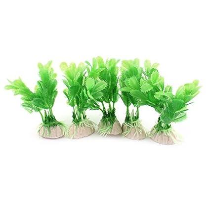 Amazon.com : eDealMax Plástico peces de acuario tanque Paisaje Planta Decoración 3, 5 pulgadas 5 x Verde : Pet Supplies