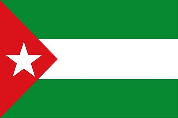 Durabol Bandera de Partido de Andalucista-Nacionalismo Andaluz-Juventudes Andalucistas (JJAA) Flag 90x150cm Satin: Amazon.es: Jardín