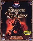 Neverwinter Nights Shadows of Undrentide 価格改定版