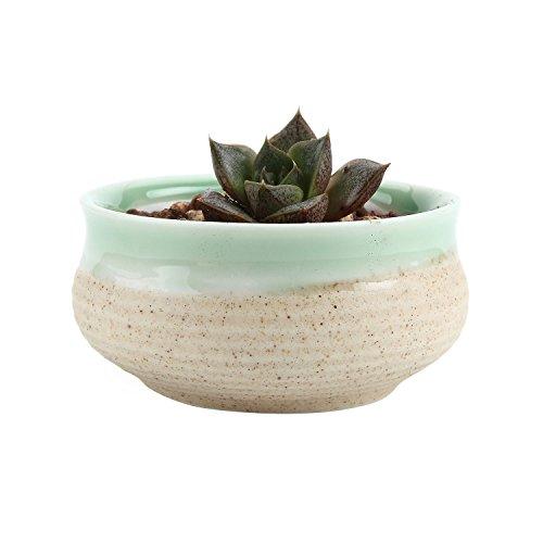 T4U 2.75 Inch Ceramic Sugar Serial succulent Plant Pot/Cactus Plant Pot Flower Pot/Container/Planter Green