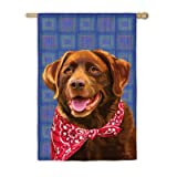 Chocolate Lab Garden Flag Size: 43″ H x 29″ W Review