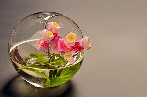 Modern Vases Crystal Glass Vase Fishbowl Planter Flower Vase Terrarium Container Flower Vase Pot Wedding Decorations 20cm 1 Pc (Plastic Fish Bowl Containers)