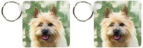 - 3dRose Cairn Terrier - Key Chains, 2.25 x 4.5 inches, set of 2 (kc_4016_1)