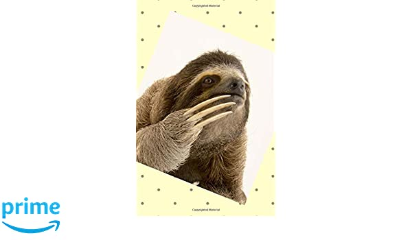 Cute Thinking Sloth: 106 Page Disguised Internet Password log Book