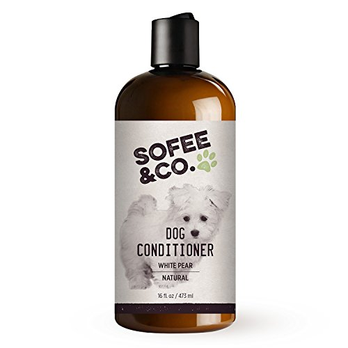 Shih Tzu Bichon Puppies (Natural Dog Conditioner, White Pear - Moisturize soothe dry itchy flaky sensitive skin. Detangle prevent mattes. Shih Tzu, Maltese, Yorkie, Bichon, Poodle, Terrier, Puppies. By Sofee & Co. 16 oz)