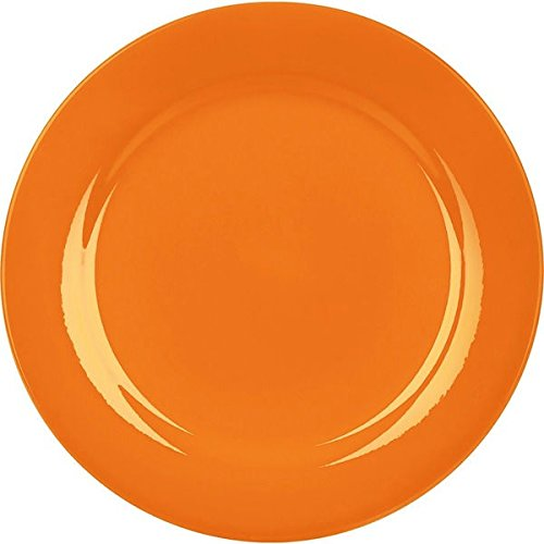 Waechtersbach Fun Factory Orange Salad Plates (Set of - Special Today Plate Your Is Day