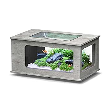 Aquatlantis Aquatable led 100x63 (Colore : Faggio): Amazon.es: Productos para mascotas