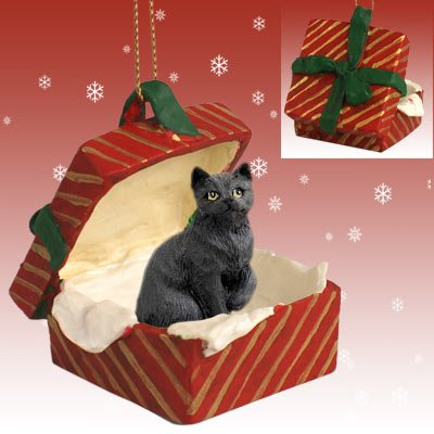 Conversation Concepts Black Shorthaired Tabby Cat Gift Box Red Ornament (Black Cat Christmas Ornament)