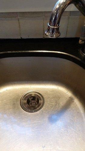 Amazon.com : Drain Hair Catcher Cover   Shower Sink Bathtub Kitchen  Bathroom Utility Stainless Steel Strainer 4 Size Value Pack : Garden U0026  Outdoor