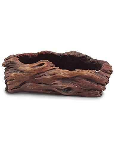 Driftwood Stump - 2