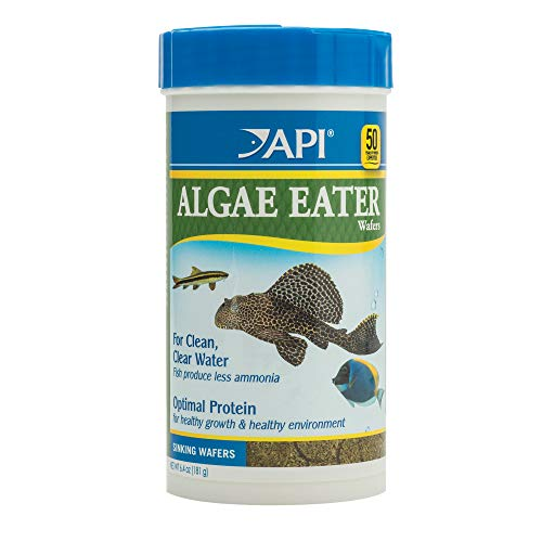 Api Food - API ALGAE EATER WAFERS Algae Wafer Fish Food 6.4-Ounce Container