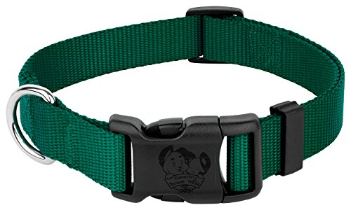 Image of Country Brook Petz | Vibrant 21 Color Selection | Deluxe Nylon Dog Collar (Green, Large, 1 Inch Wide)