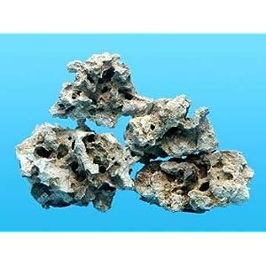 Worldwide Imports AWW0855 Atlantic Coral Rock, 40-Pound 10