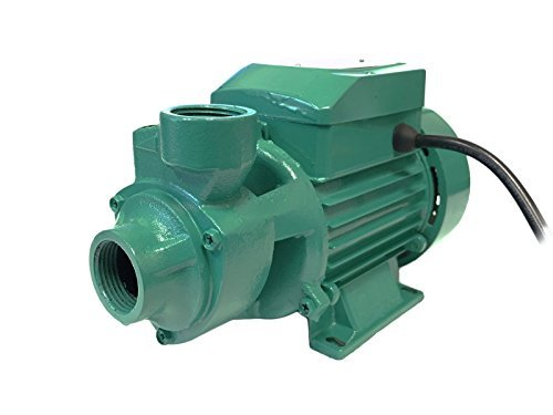 Professional EZ Travel Collection Electric Water Pump Continuous Industrial Duty (1/2 HP Motor) by Professional EZ Travel Collection