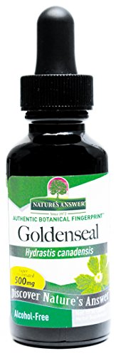 Nature's Answer Alcohol-Free Goldenseal Root, 1-Fluid Ounce (Natures Answer Alcohol)