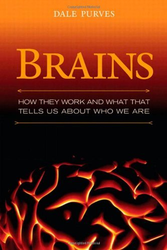 Brains: How They Seem to Work (FT Press Science) by Dale Purves (2010-04-19)