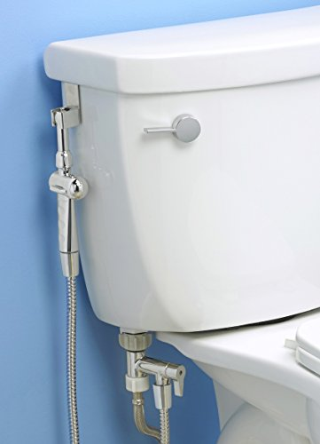 how to add a bidet to a standard toilet