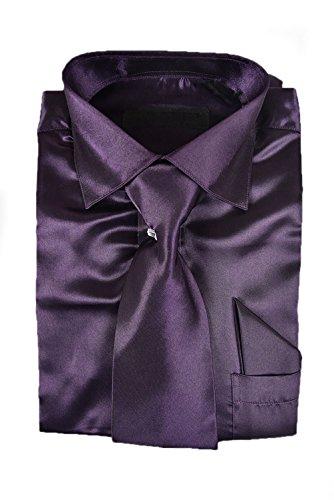 Classy Men's Satin Shiny Dark Purple/ Egg Plant - Egg Plant Ties