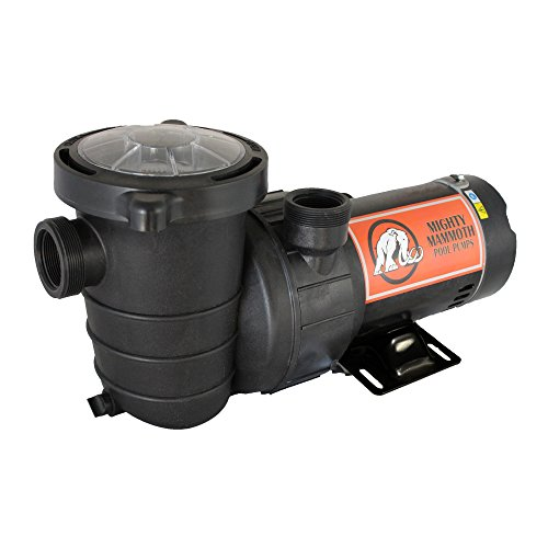 - 2 Horsepower Above Ground Pool Pump with Cord - Mighty Mammoth High Performance Motor for Clean Swimming Pool Water - 2 HP - 110V-120V - 60HZ