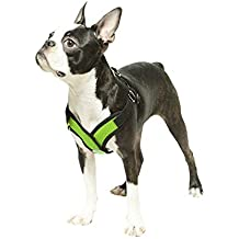 Gooby Choke Free Step-In Comfort Dog Harness, Green, X-Large