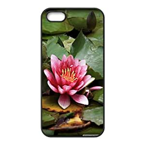 Vety Red Lotus Resting on the Pond Case for IPhone 5,5S, with Black
