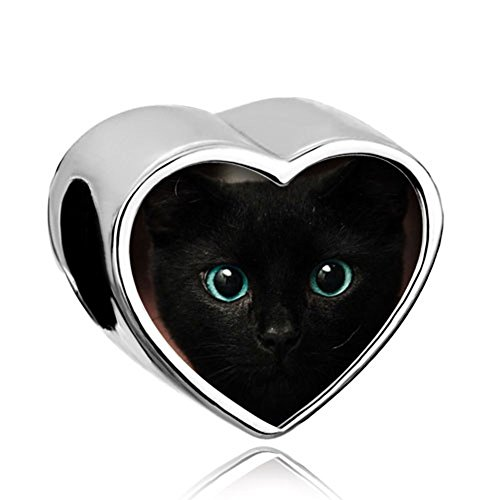 CharmSStory Heart Animal Charms Photo