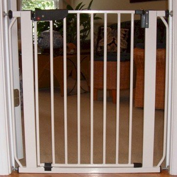 Autolock Pressure Mounted Pet Gate Finish: Beechwood by Cardinal Gates