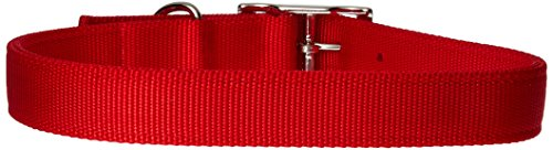 Coastal Pet Products DCP290122RED Nylon Double Dog Collar, 1 by 22-Inch, Red