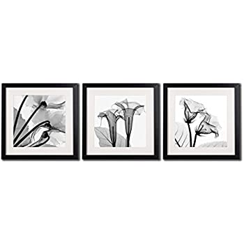 Framed poppy wall art decor transparent flowers canvas print artworks for home decorations a set of