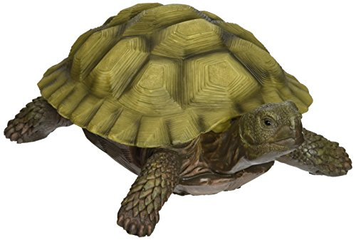 Design Toscano Gilbert the Box Turtle Statue, Multicolored