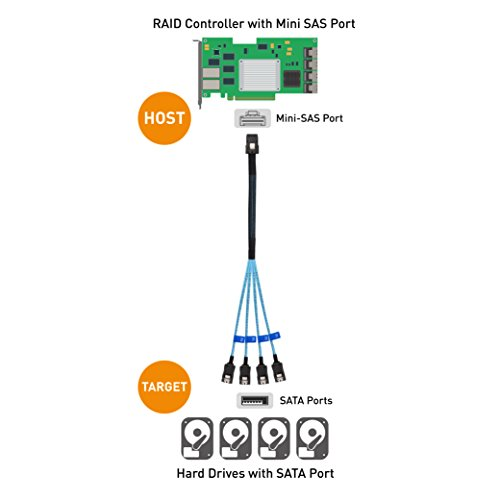 Cable Matters Internal Mini SAS to SATA Cable (SFF-8087 to SATA Forward Breakout) 3.3 Feet