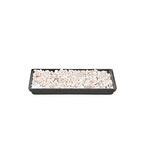 Brussel's 8″ Humidity Tray with Decorative Rocks
